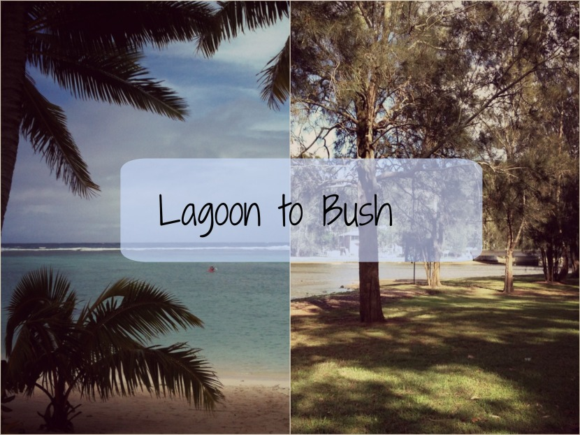 From Lagoon to Bush