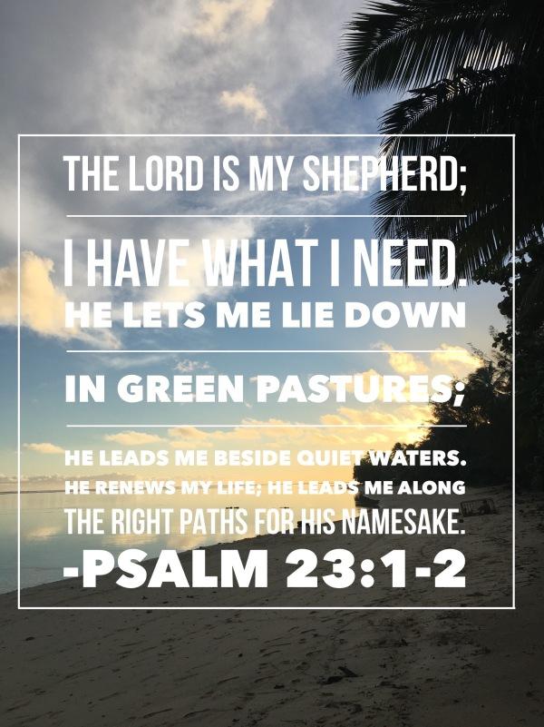 Psalm2312